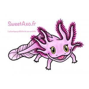 Axolotl Leucistique