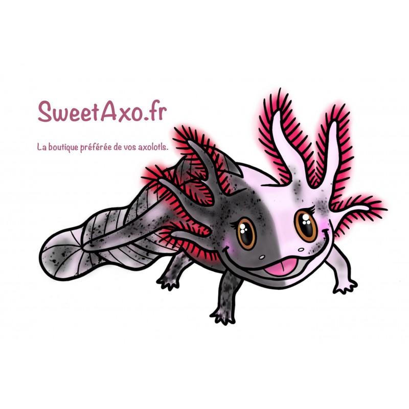 Axolotl Mosaïque